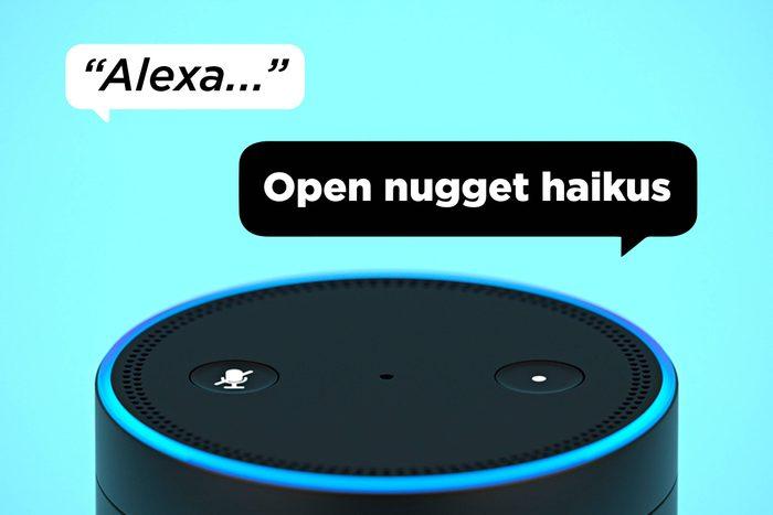 Alexa Open Nugget Haikus