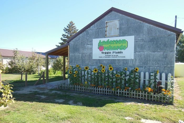 Anderson Orchards