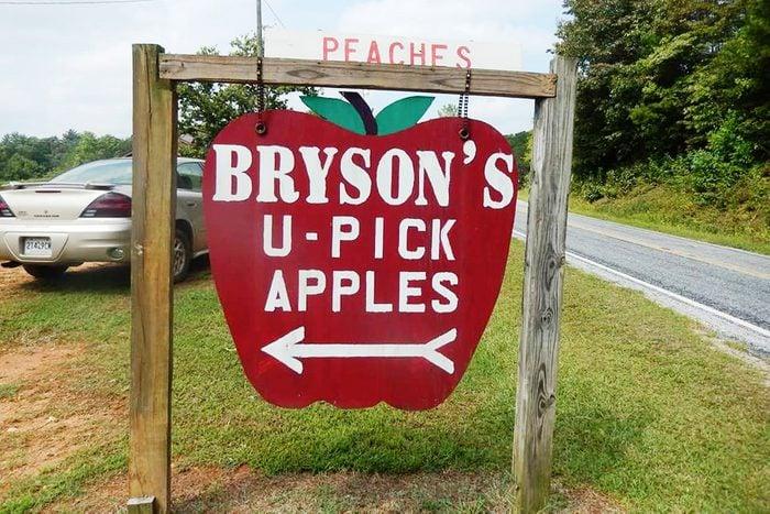 Bryson's Apple Orchard, Mountain Rest, South Carolina
