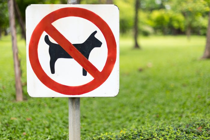 No pets allowed sign in the park.