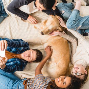 25 Ways to Celebrate National Dog Day