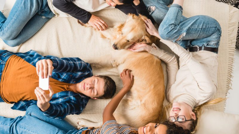 overhead view of multicultural teens lying on bed and taking selfie with dog