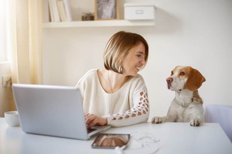 Freelancer using laptop for working, dog next to her