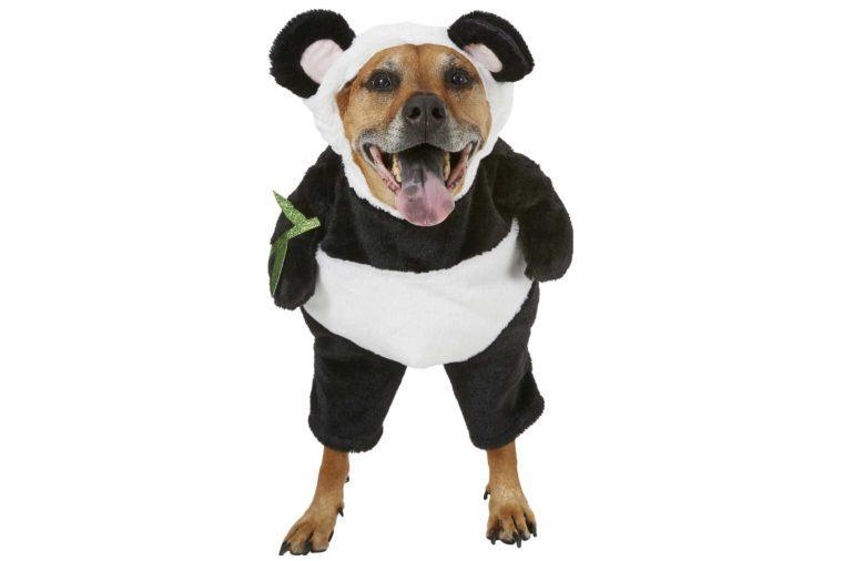 04-Panda