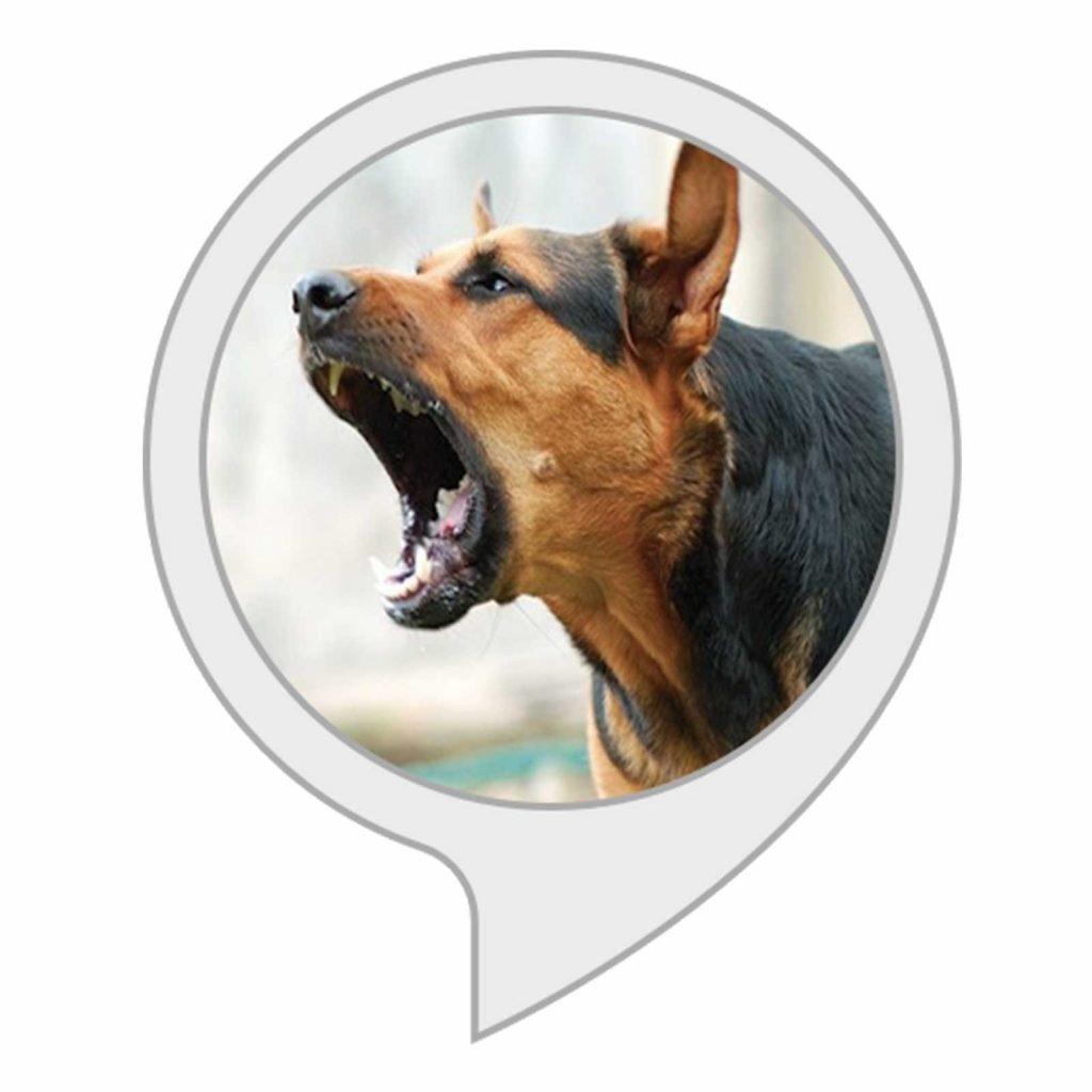 04-Stop-Dog-Barking