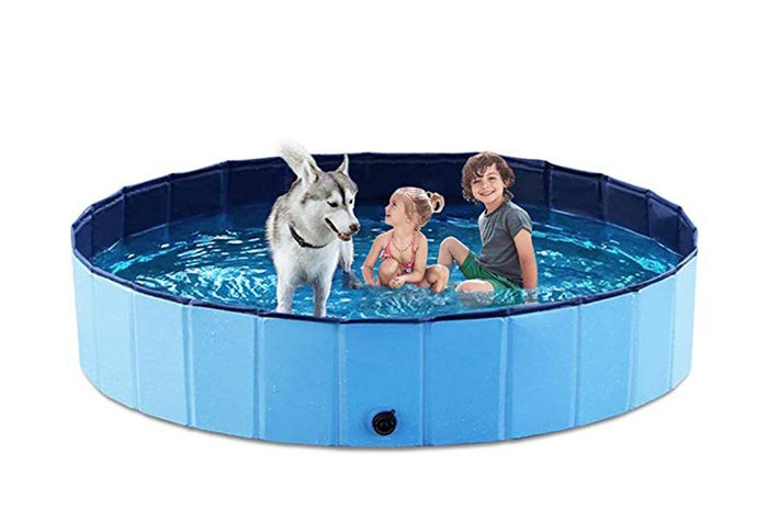 07_Give-your-dog-a-place-to-do-the-doggy-paddle