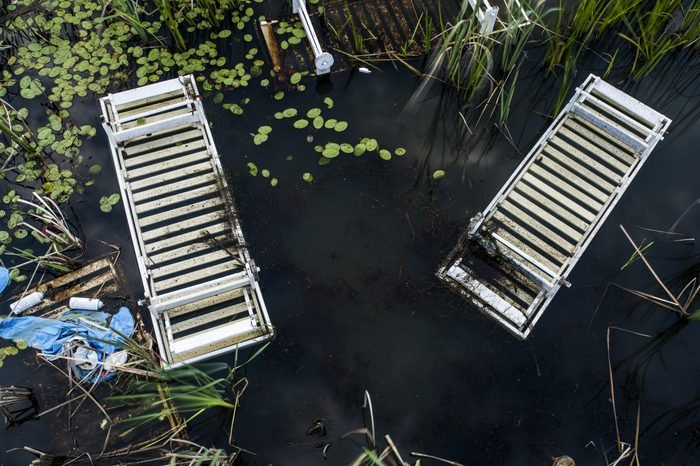 A view of white pool chairs resting in an abandoned and overgrown swimming pool at the decrypt Pines Resort in the Catskill Mountains of New York.