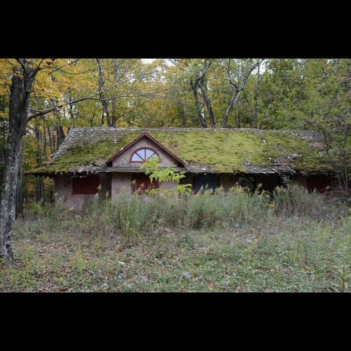 Abandoned-home-with-moss-growing-on-roof