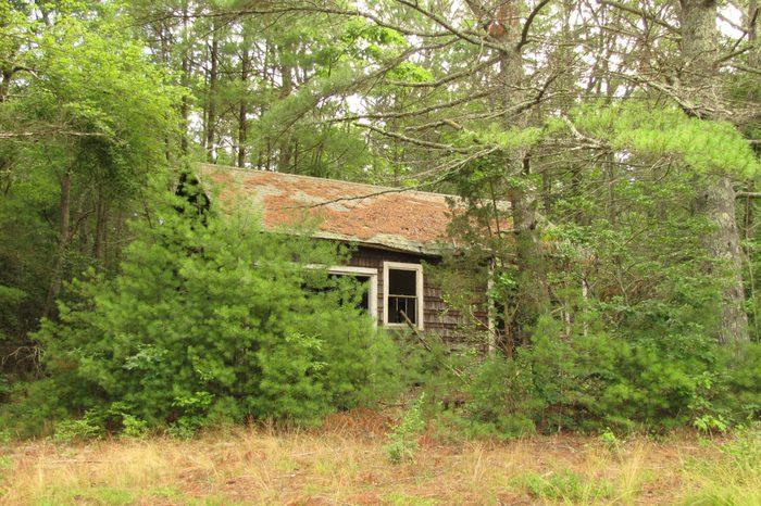 Abandoned house. Exeter, Rhode Island.