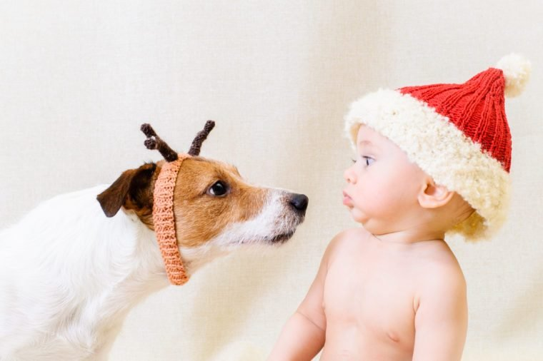 Amusing Santa Claus meets funny reindeer. Concept for 2018 year of Yellow Earth Dog