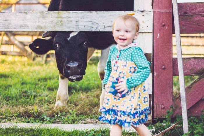 a young girl smiles next to a cow behind a fence leaning down to see her