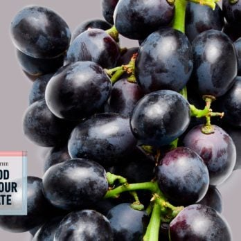 If Grapes Could Talk, Here's What They Would Tell You