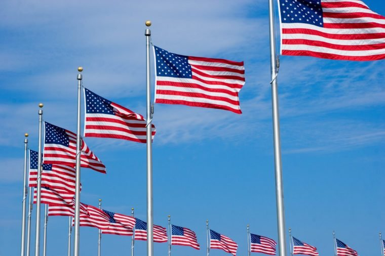US Flags at the Washington Monument in DC