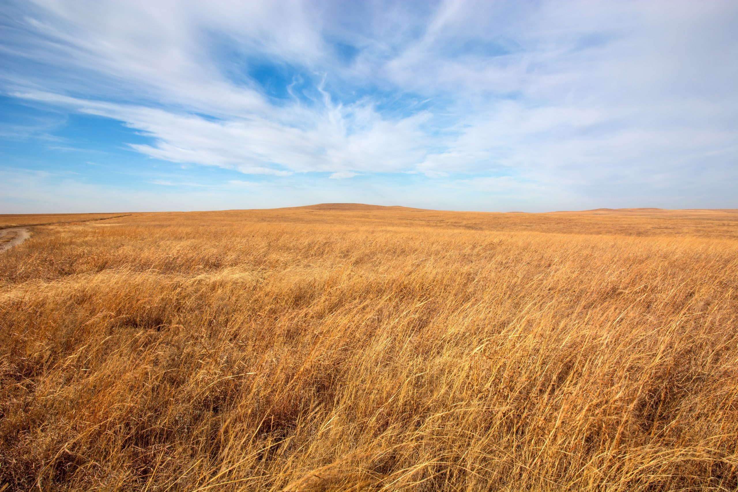Flint Hills tallgrass prairie in Kansas.