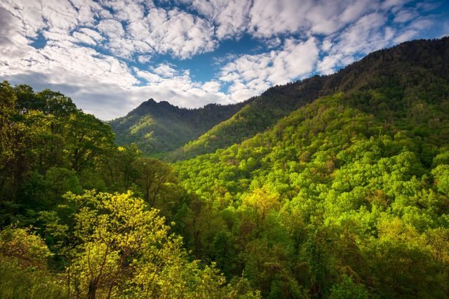 Great Smoky Mountains National Park Scenic Landscape Photography Gatlinburg TN featuring morning light skipping across popular hiking area The Chimneys