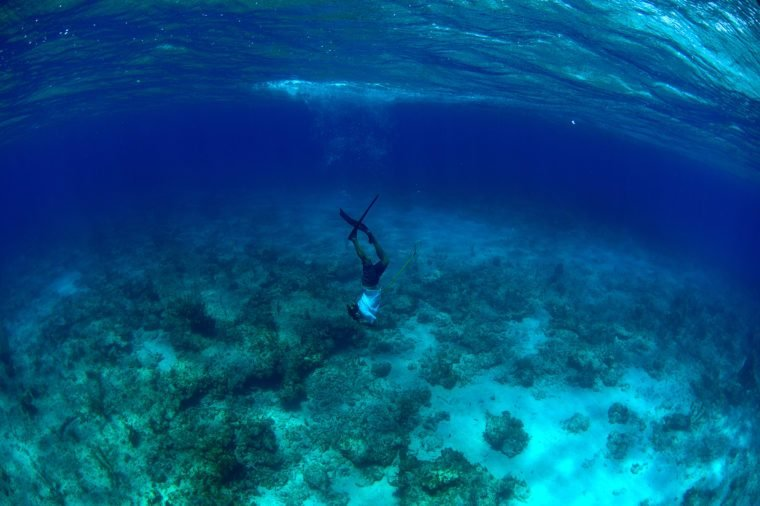 Man spearfishing and free diving in the Atlantic Ocean