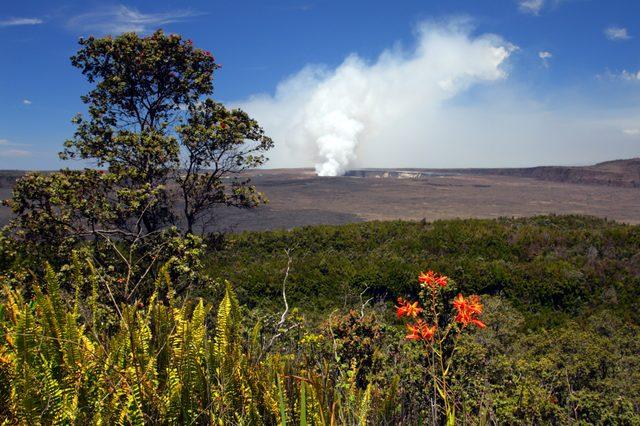 Stock image of Hawaii Volcanoes National Park, USA
