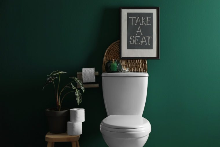 Decor elements, paper rolls and toilet bowl near green wall. Bathroom interior