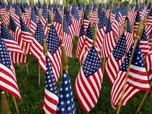A Sea of American Flags, American Holiday Spirit; Military, Holidays, Independence, Memorial, Veteran, Vietnam and Patriotism Ideas