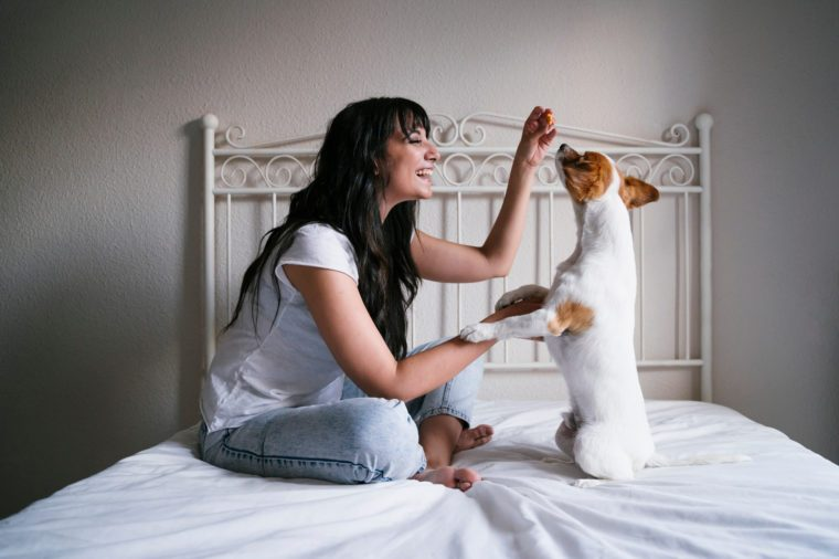 young caucasian woman on bed with her cute small dog playing and giving him treats. Love for animals concept. Lifestyle indoors