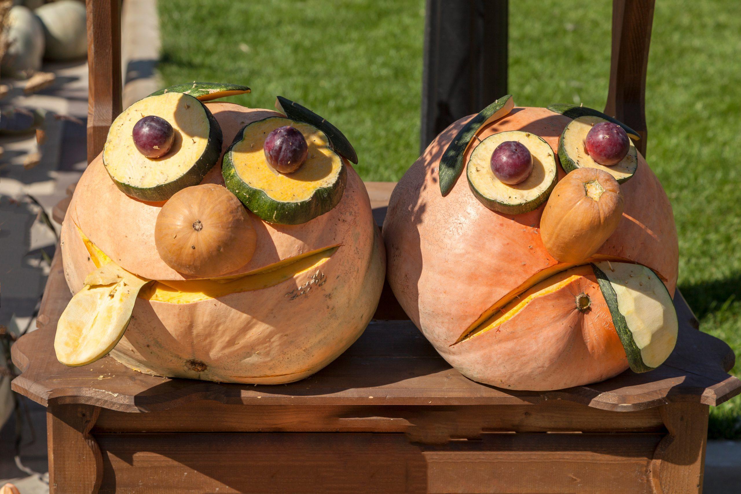 golden autumn, large different pumpkins, Different varieties of pumpkins, a wooden cart with pumpkins,Funny crafts made of pumpkins,