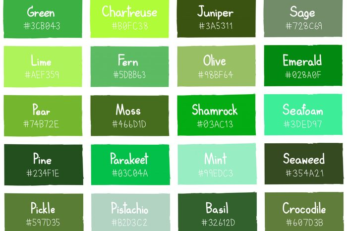 Green Tone Color Shade Background with Code and Name Illustration