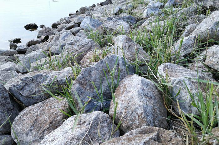 Stone coast or rock coast in lake