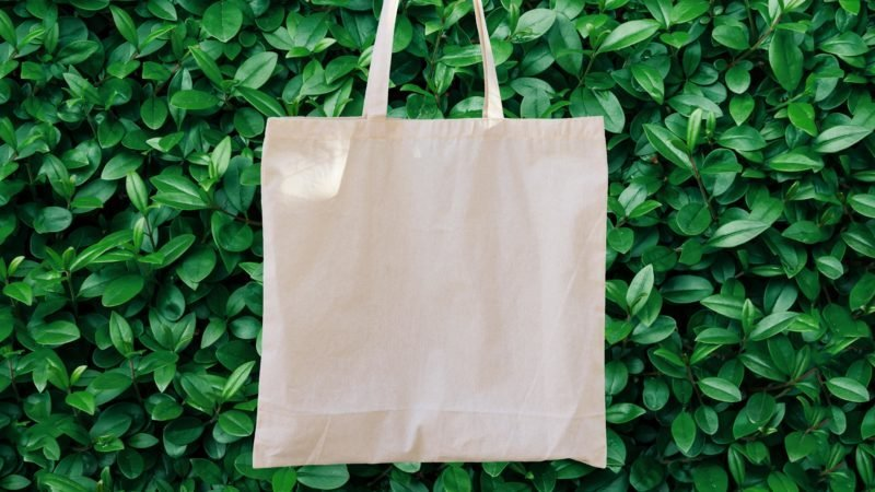 Cons Of Reusable Bags More People Need To Think About