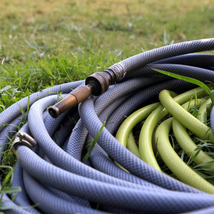 Water hose with metal nozzle coiled on green grass in garden.