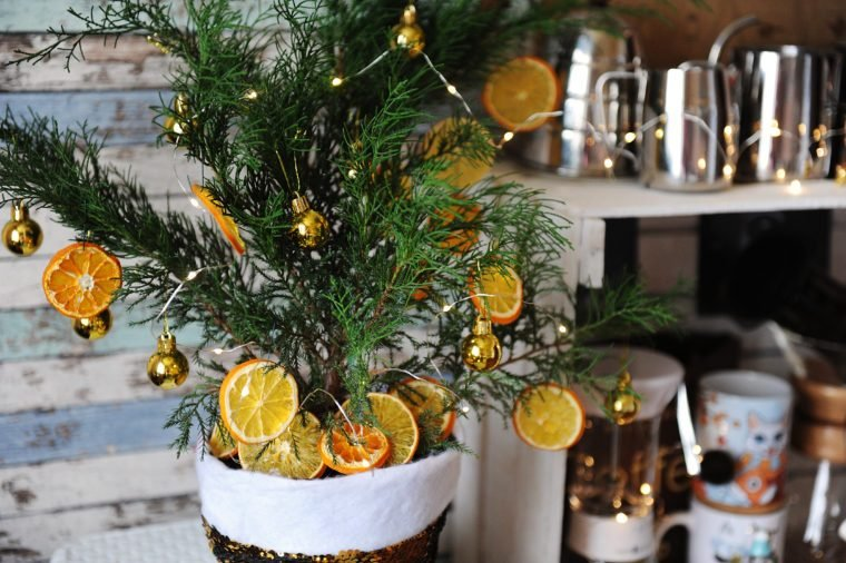 Small Christmas tree juniper in a pot. Decorated with tiny golden balls, dehydrated slices of citrus and light garland