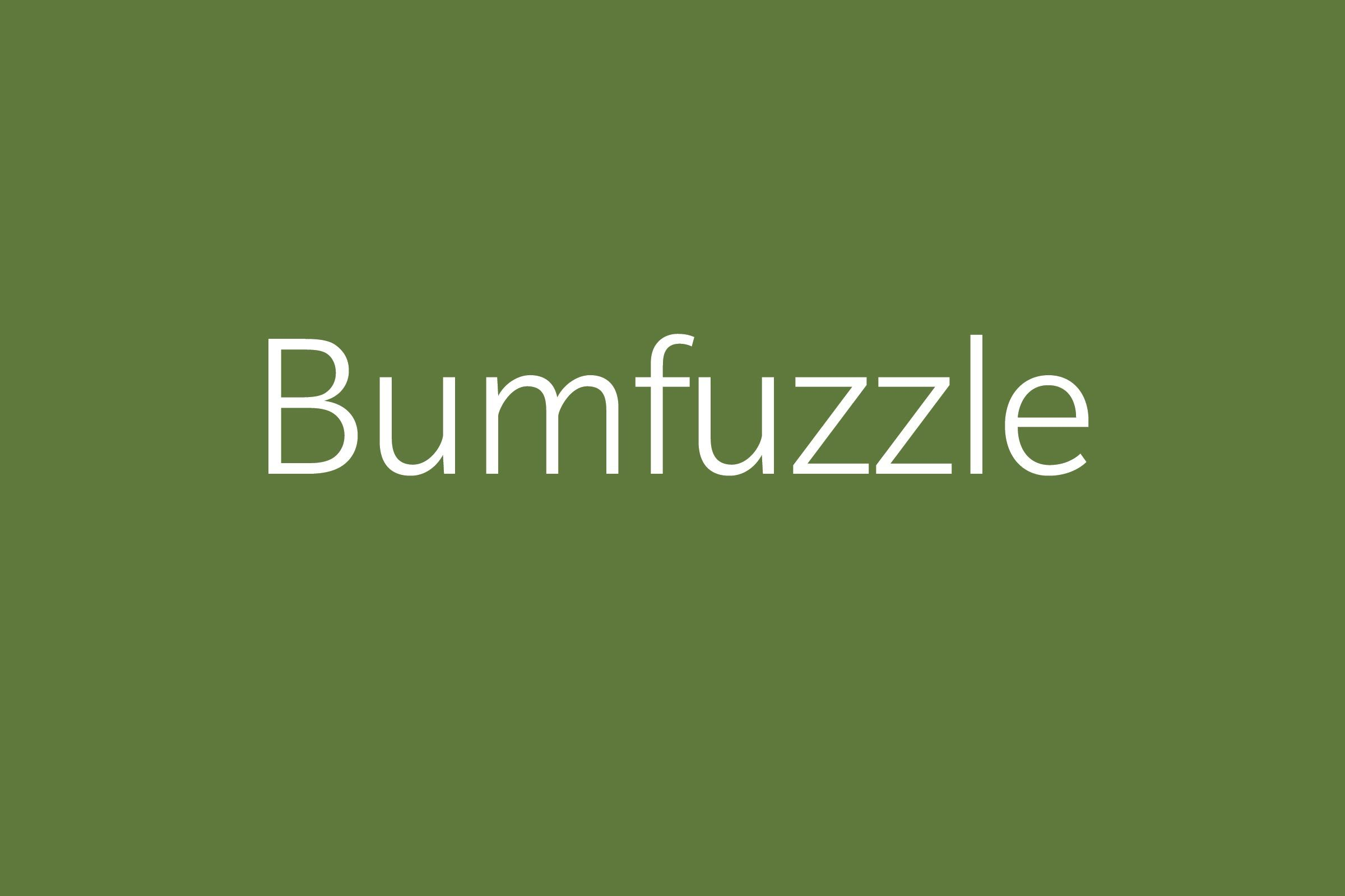 bumfuzzle funny word Funny words