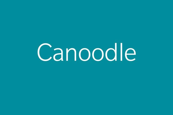 canoodle funny word funny words to say