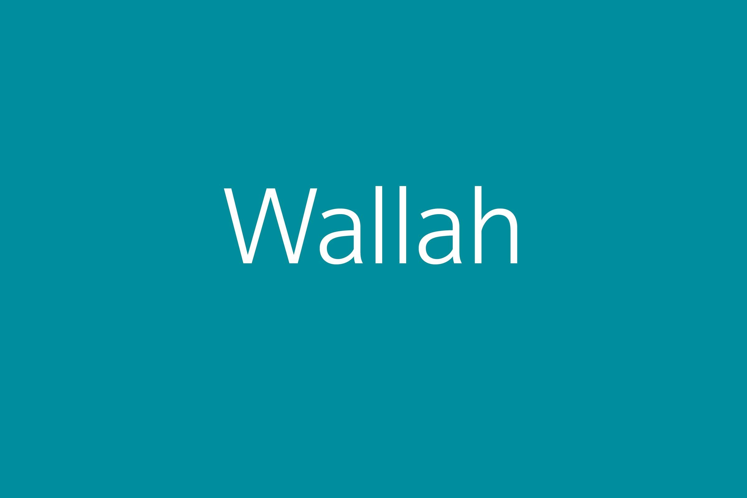 wallah funny word funny words to say