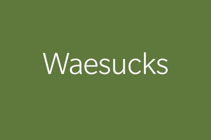 waesucks funny word funny words to say