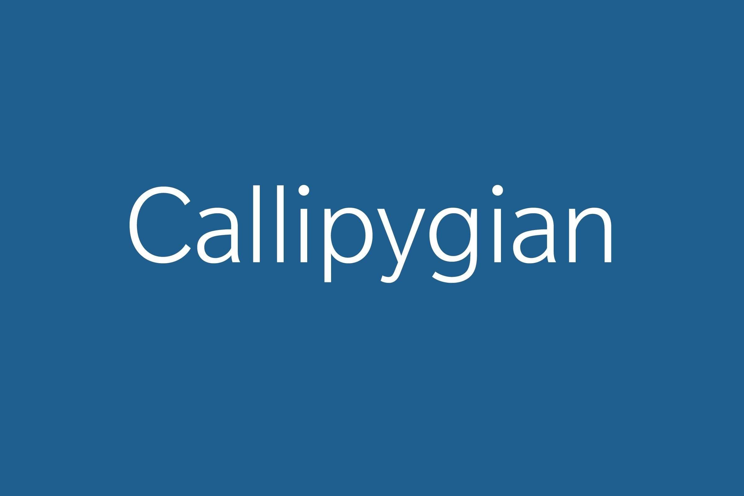 callipygian funny word funny words to say