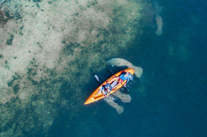 Kayaking with manatees at Crystal River, FL