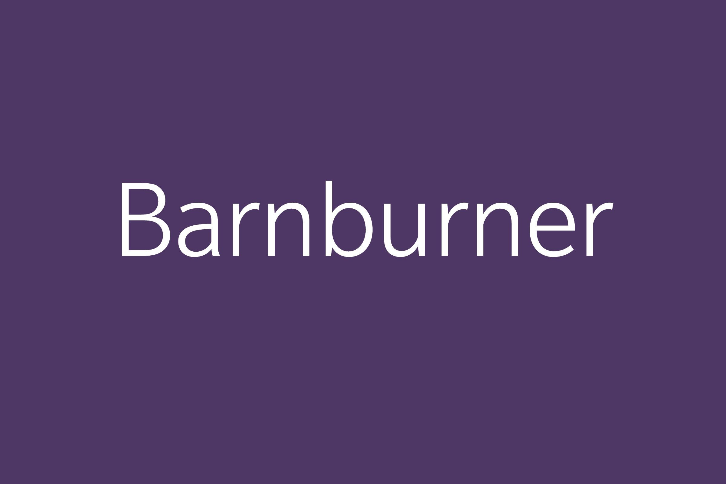 barnburner funny word funny words to say