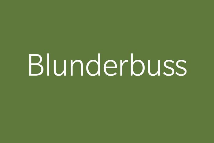 blunderbuss funny word funny words to say