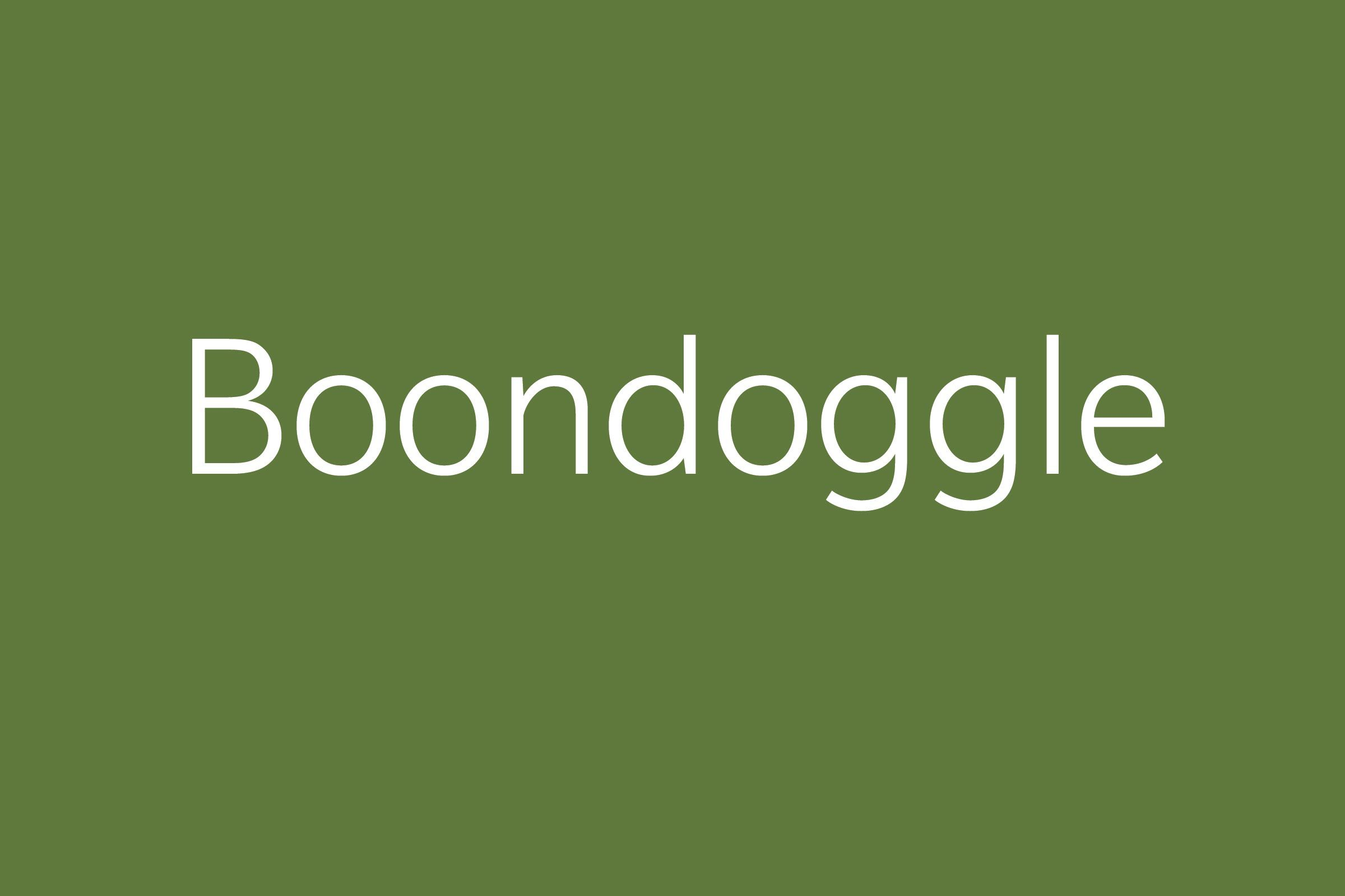 boonoggle funny word funny words to say
