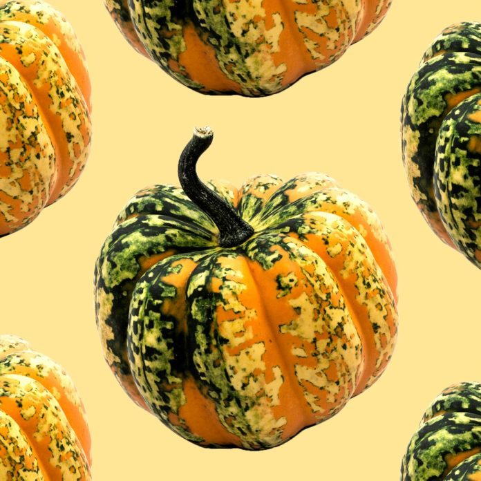 If Squash Could Talk, Here's What It Would Tell You
