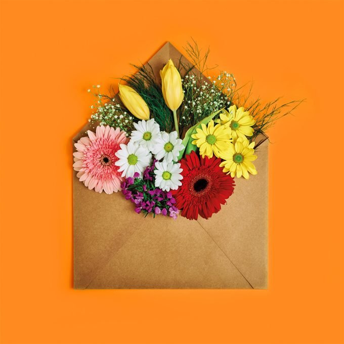 flowers coming out of a craft-paper envelope on orange background