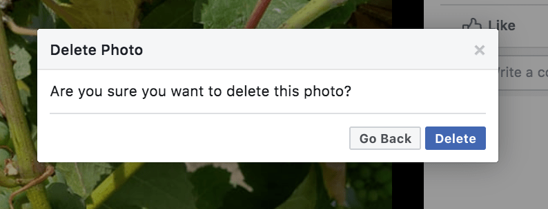 Delete Facebook Photo Screenshot