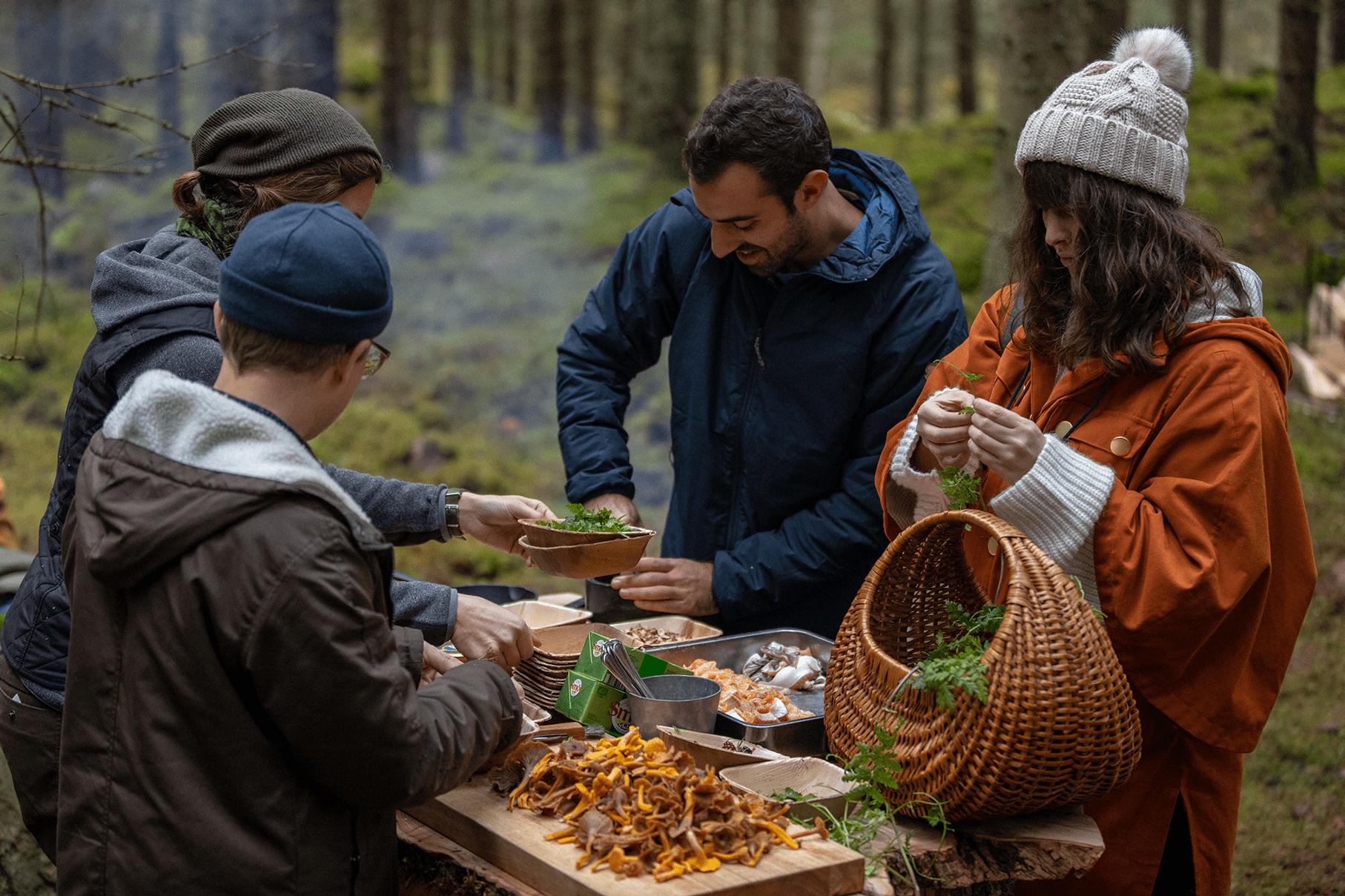 food foraging Sweden