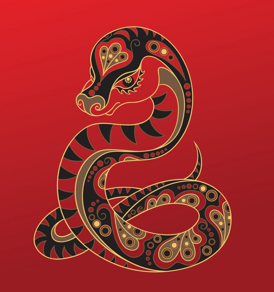 Snake - Chinese horoscope animal sign. The vector art image in decorative style.