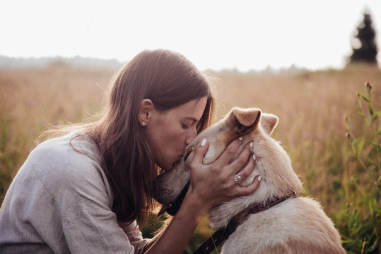 Human and a dog. Girl and her friend dog on the straw field background. Beautiful young woman relaxed and carefree enjoying a summer sunset with her lovely dog