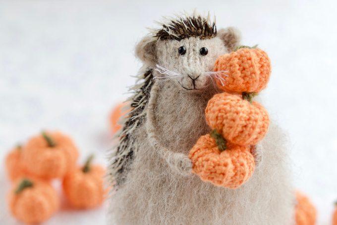 hedgehog holding a pumpkin