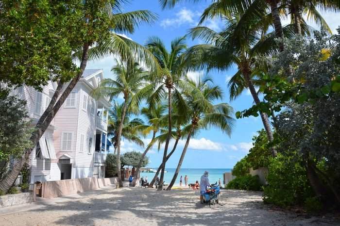 Key West - Dog beach