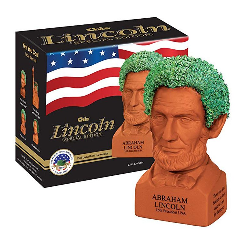 chia pet lincoln
