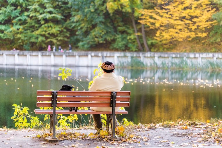 Lonely senior woman with a small black dog sitting on a bench by the autumn lake or river in a city park. Relaxation. Loneliness concept.