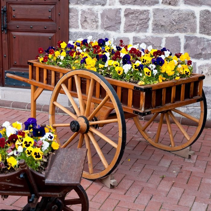 wooden cart with flowers pansies inside